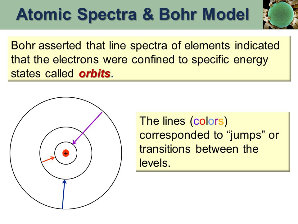 + orbits Bohr asserted that line spectra of elements indicated that the electrons were confined to specific energy states called orbits.