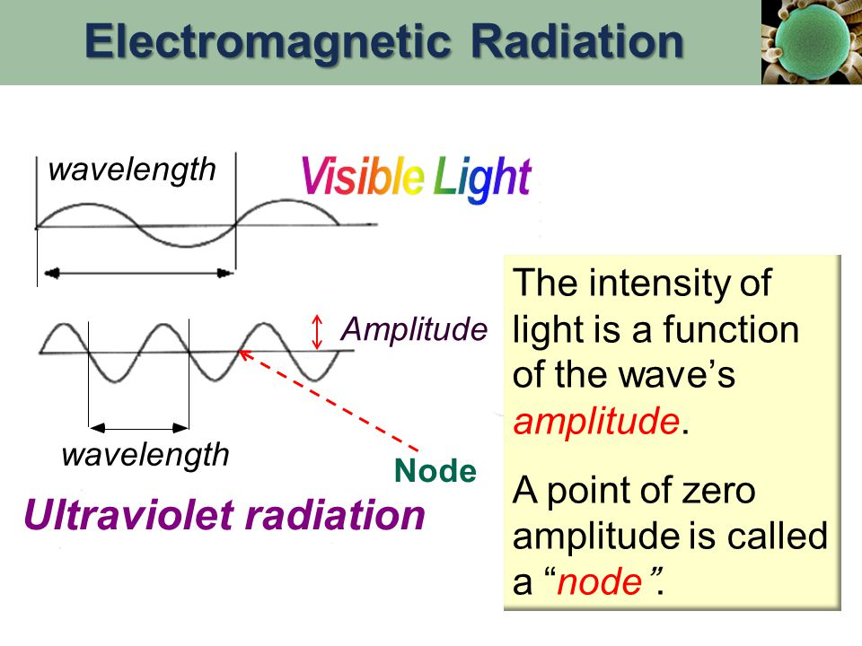 wavelength Ultraviolet radiation Amplitude Node The intensity of light is a function of the wave's amplitude.