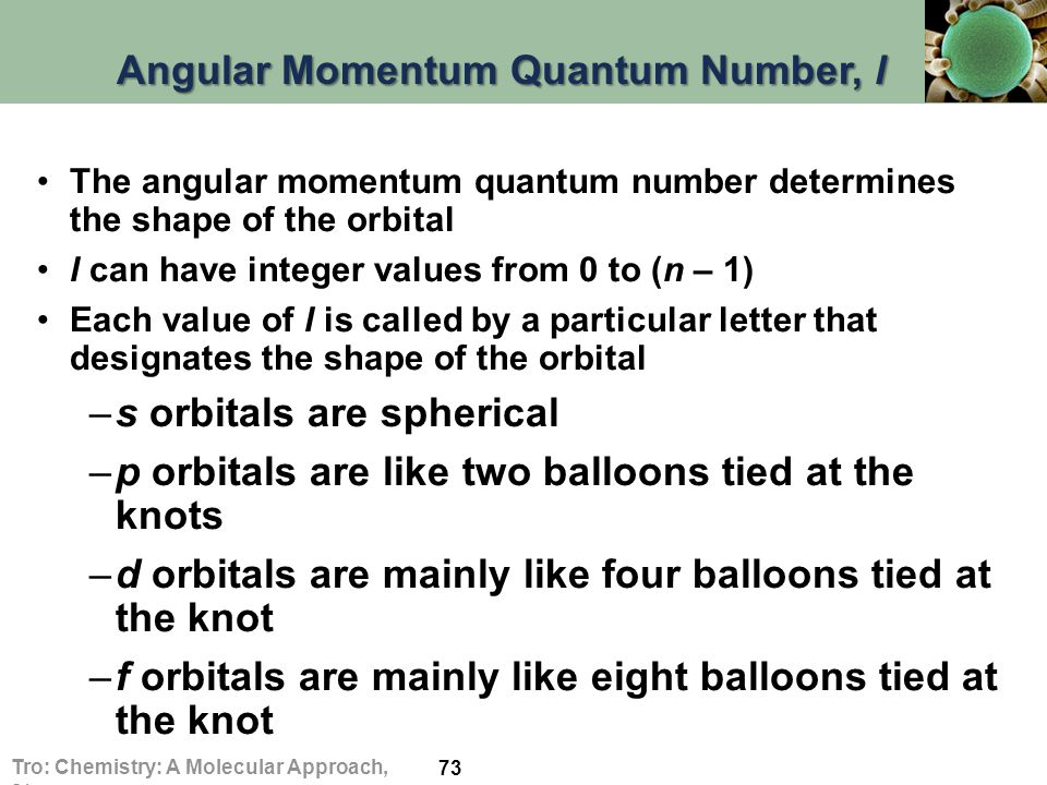 Angular Momentum Quantum Number, l The angular momentum quantum number determines the shape of the orbital l can have integer values from 0 to (n – 1) Each value of l is called by a particular letter that designates the shape of the orbital –s orbitals are spherical –p orbitals are like two balloons tied at the knots –d orbitals are mainly like four balloons tied at the knot –f orbitals are mainly like eight balloons tied at the knot 73 Tro: Chemistry: A Molecular Approach, 2/e