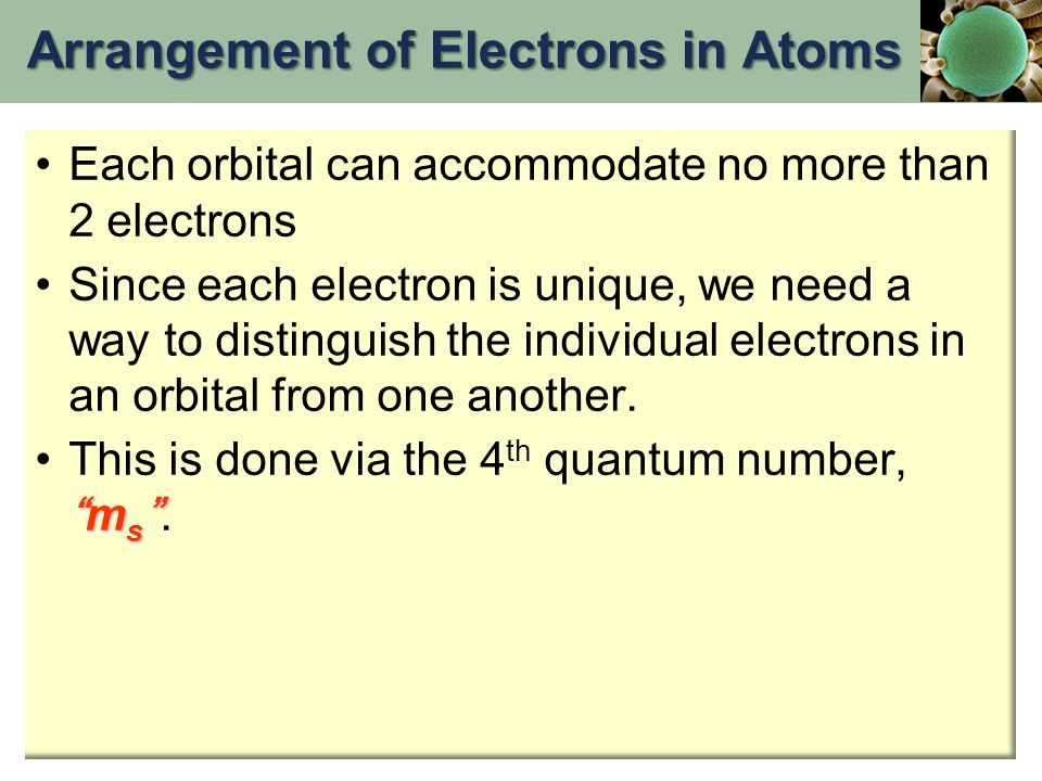 Each orbital can accommodate no more than 2 electrons Since each electron is unique, we need a way to distinguish the individual electrons in an orbital from one another.