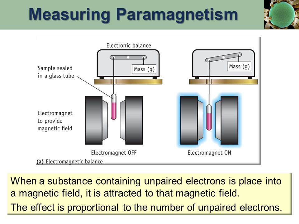 When a substance containing unpaired electrons is place into a magnetic field, it is attracted to that magnetic field.