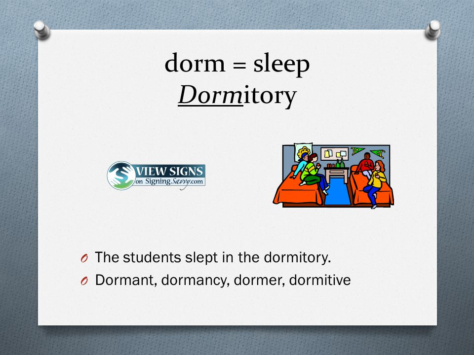 dorm = sleep Dormitory O The students slept in the dormitory.