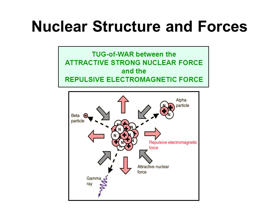 Nuclear Structure and Forces TUG-of-WAR between the ATTRACTIVE STRONG NUCLEAR FORCE and the REPULSIVE ELECTROMAGNETIC FORCE