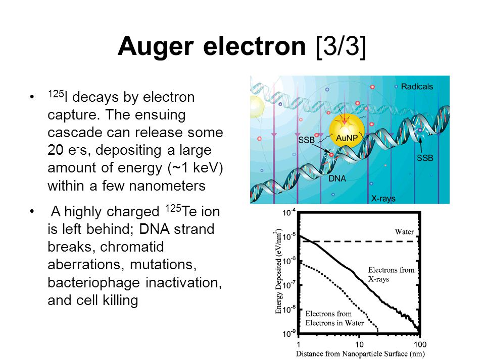 Auger electron [3/3] 125 I decays by electron capture.