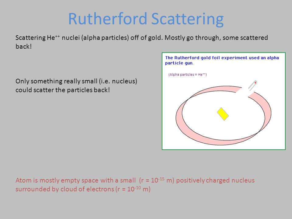 Rutherford Scattering Scattering He ++ nuclei (alpha particles) off of gold.