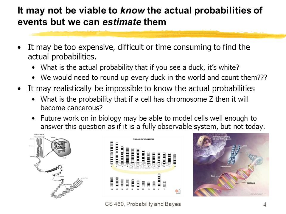 CS 460, Probability and Bayes 4 It may not be viable to know the actual probabilities of events but we can estimate them It may be too expensive, difficult or time consuming to find the actual probabilities.