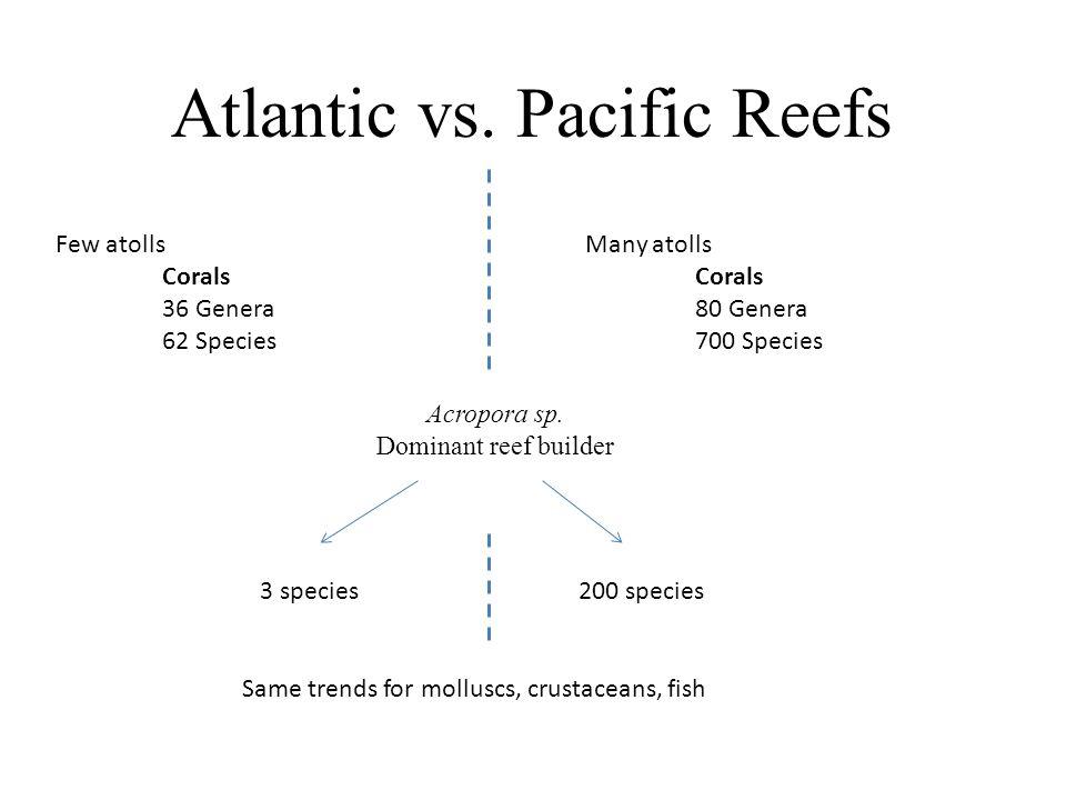 Atlantic vs.
