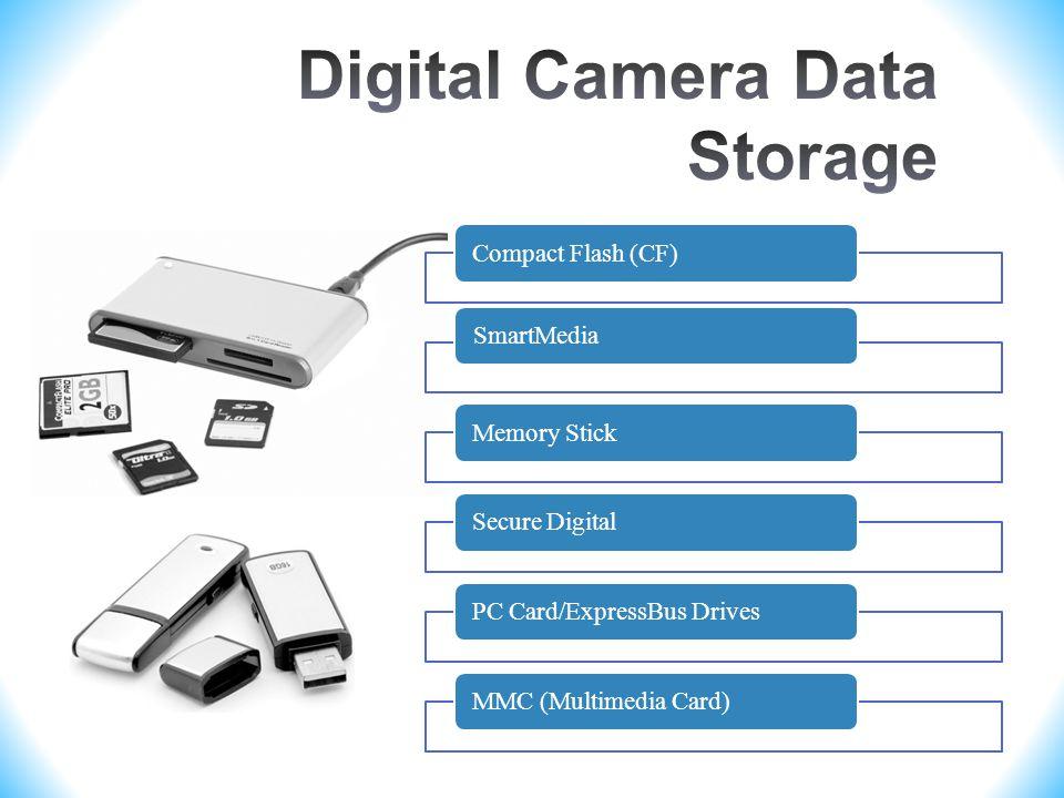 Compact Flash (CF)SmartMediaMemory StickSecure DigitalPC Card/ExpressBus DrivesMMC (Multimedia Card)