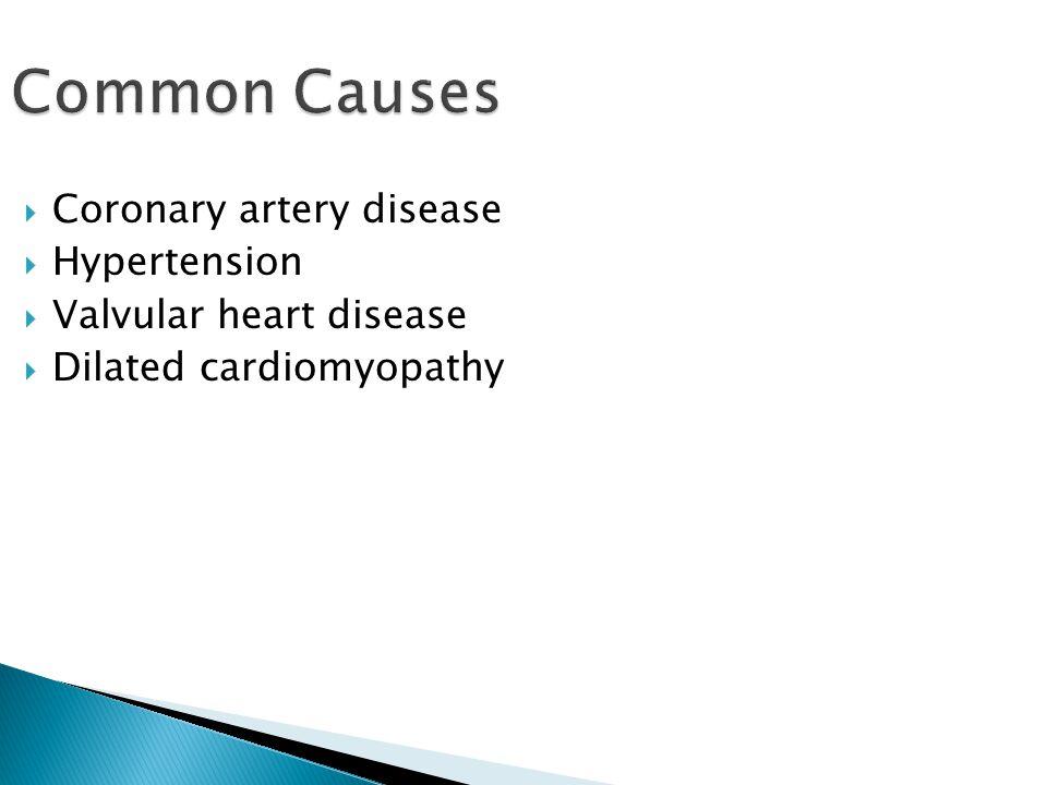 Common Causes  Coronary artery disease  Hypertension  Valvular heart disease  Dilated cardiomyopathy