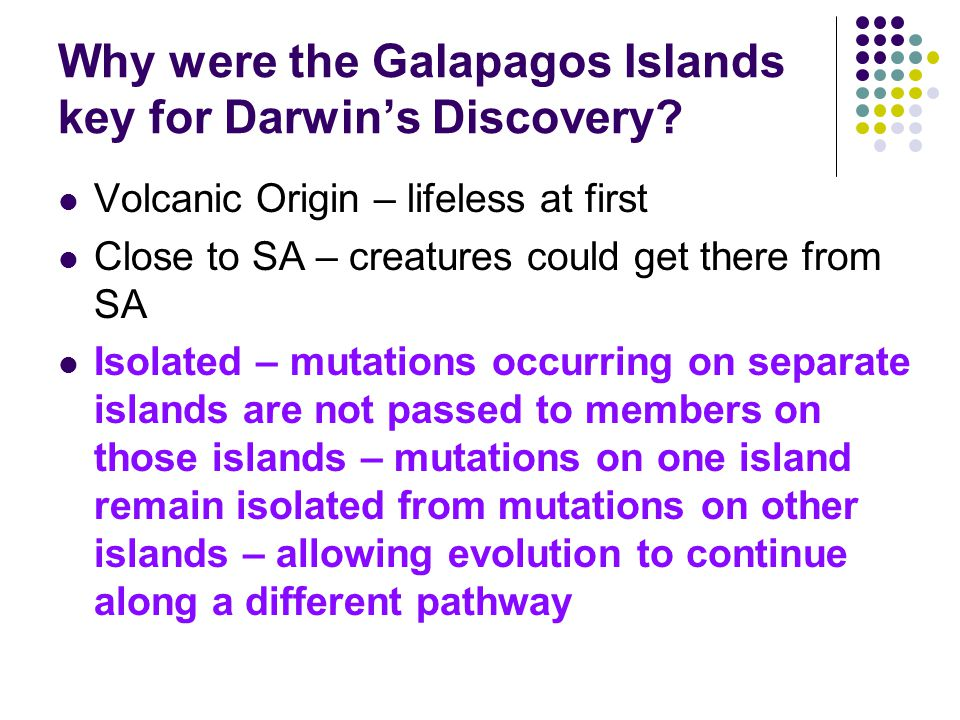 Why were the Galapagos Islands key for Darwin's Discovery? Volcanic Origin – lifeless at first Close to SA – creatures could get there from SA Isolate
