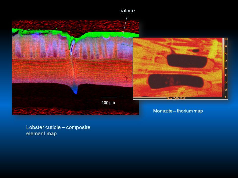 Lobster cuticle – composite element map calcite 100 μm Monazite – thorium map
