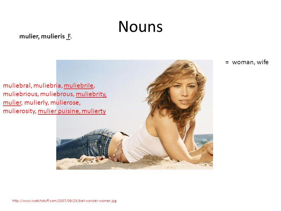 Nouns http://www.iwatchstuff.com/2007/09/25/biel-wonder-woman.jpg mulier, mulieris F.