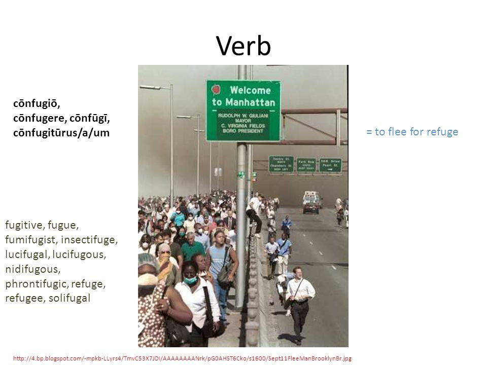 Verb http://4.bp.blogspot.com/-mpkb-LLyrs4/TmvC53X7JDI/AAAAAAAANrk/pG0AHST6Cko/s1600/Sept11FleeManBrooklynBr.jpg cōnfugiō, cōnfugere, cōnfūgī, cōnfugitūrus/a/um = to flee for refuge fugitive, fugue, fumifugist, insectifuge, lucifugal, lucifugous, nidifugous, phrontifugic, refuge, refugee, solifugal