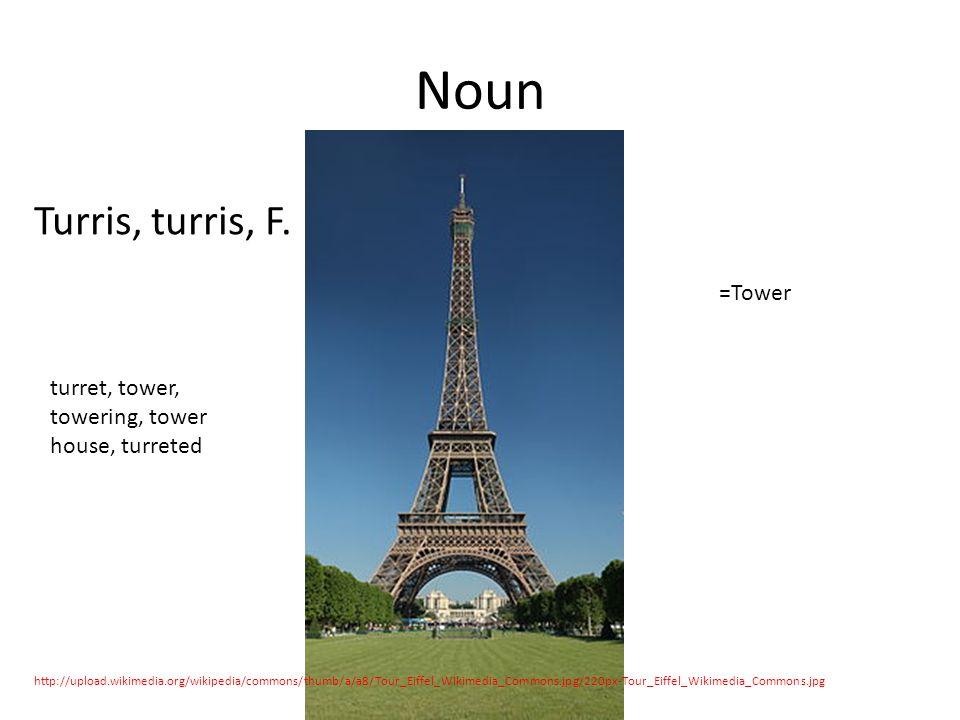 Noun Turris, turris, F.