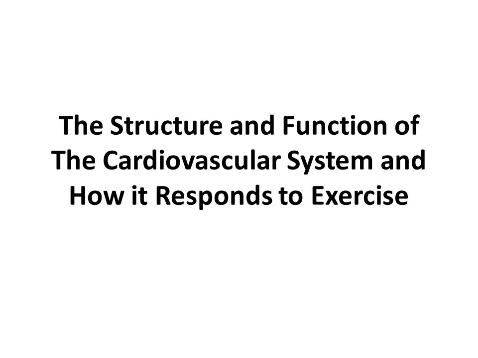 The Structure and Function of The Cardiovascular System and How it Responds to Exercise