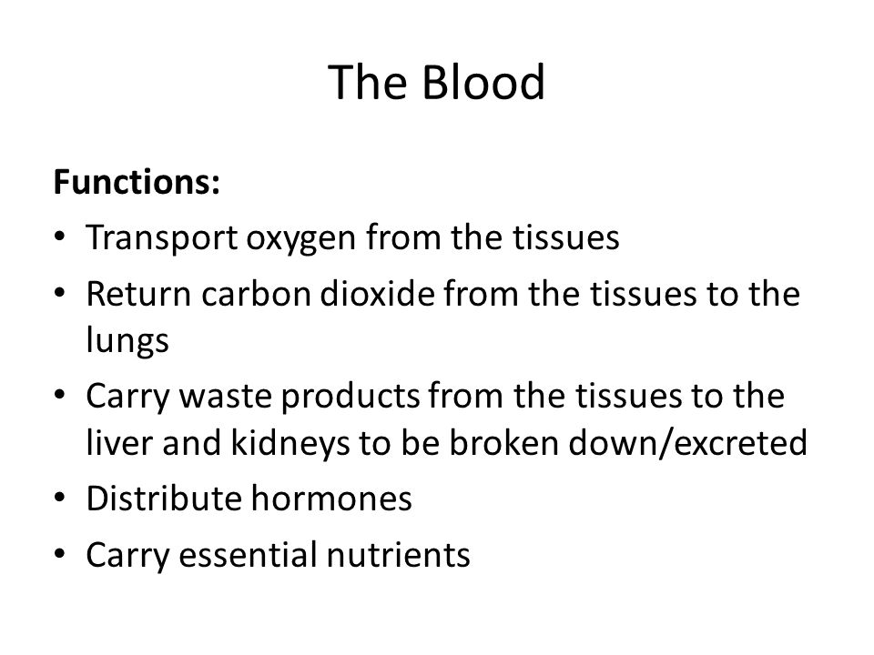 The Blood Functions: Transport oxygen from the tissues Return carbon dioxide from the tissues to the lungs Carry waste products from the tissues to th