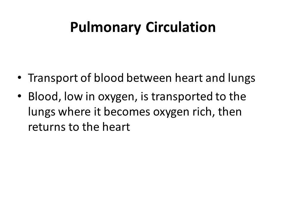 Pulmonary Circulation Transport of blood between heart and lungs Blood, low in oxygen, is transported to the lungs where it becomes oxygen rich, then