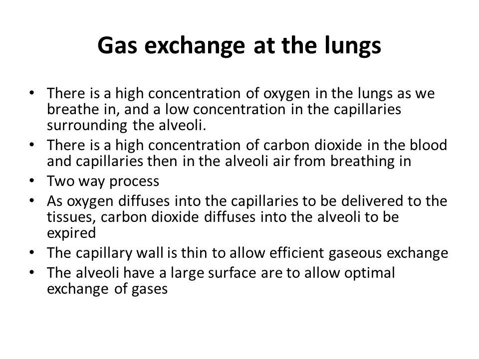 Gas exchange at the lungs There is a high concentration of oxygen in the lungs as we breathe in, and a low concentration in the capillaries surroundin