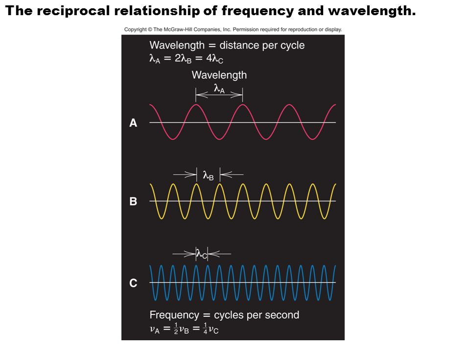 The reciprocal relationship of frequency and wavelength.