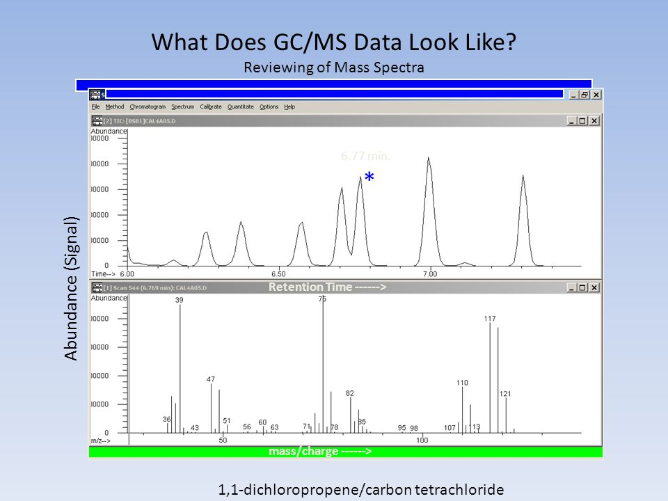 What Does GC/MS Data Look Like.