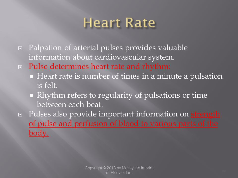  Palpation of arterial pulses provides valuable information about cardiovascular system.  Pulse determines heart rate and rhythm:  Heart rate is nu