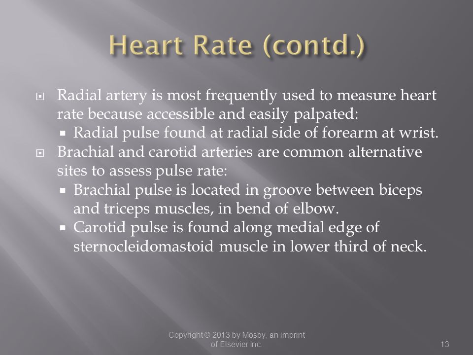  Radial artery is most frequently used to measure heart rate because accessible and easily palpated:  Radial pulse found at radial side of forearm a
