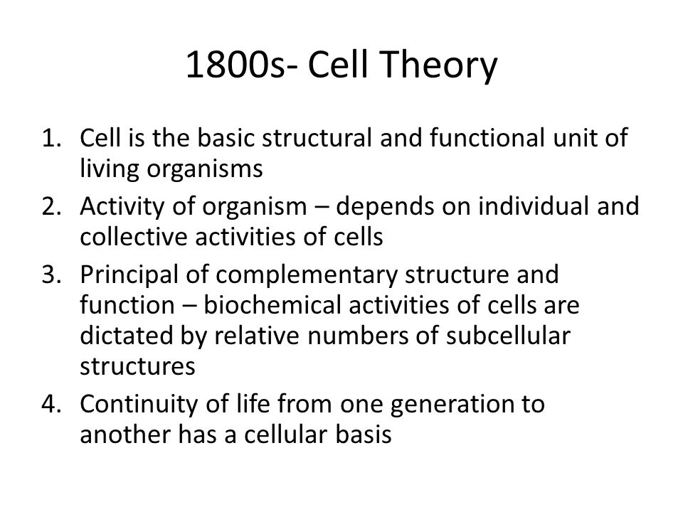 1800s- Cell Theory 1.Cell is the basic structural and functional unit of living organisms 2.Activity of organism – depends on individual and collective activities of cells 3.Principal of complementary structure and function – biochemical activities of cells are dictated by relative numbers of subcellular structures 4.Continuity of life from one generation to another has a cellular basis