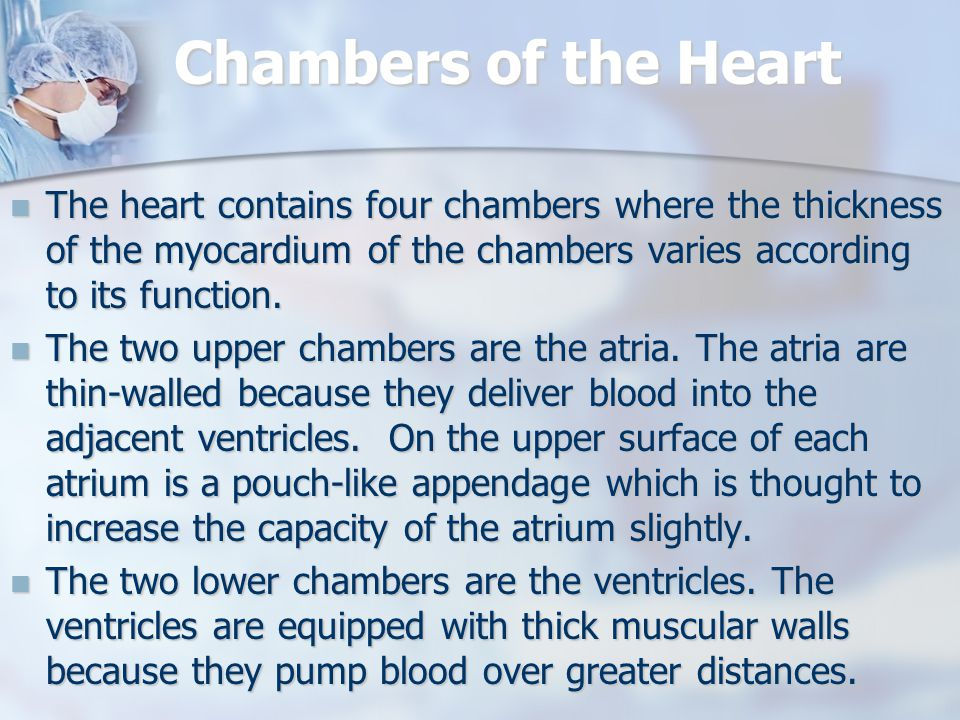 Chambers of the Heart The heart contains four chambers where the thickness of the myocardium of the chambers varies according to its function.