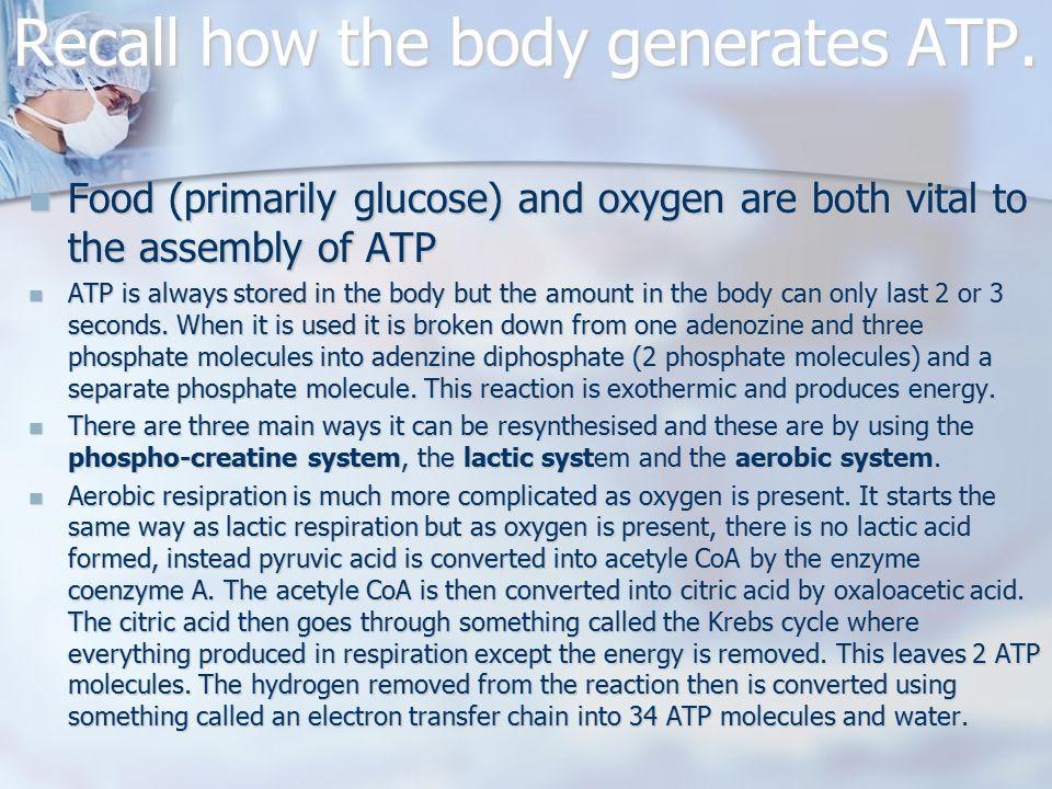 Recall how the body generates ATP.