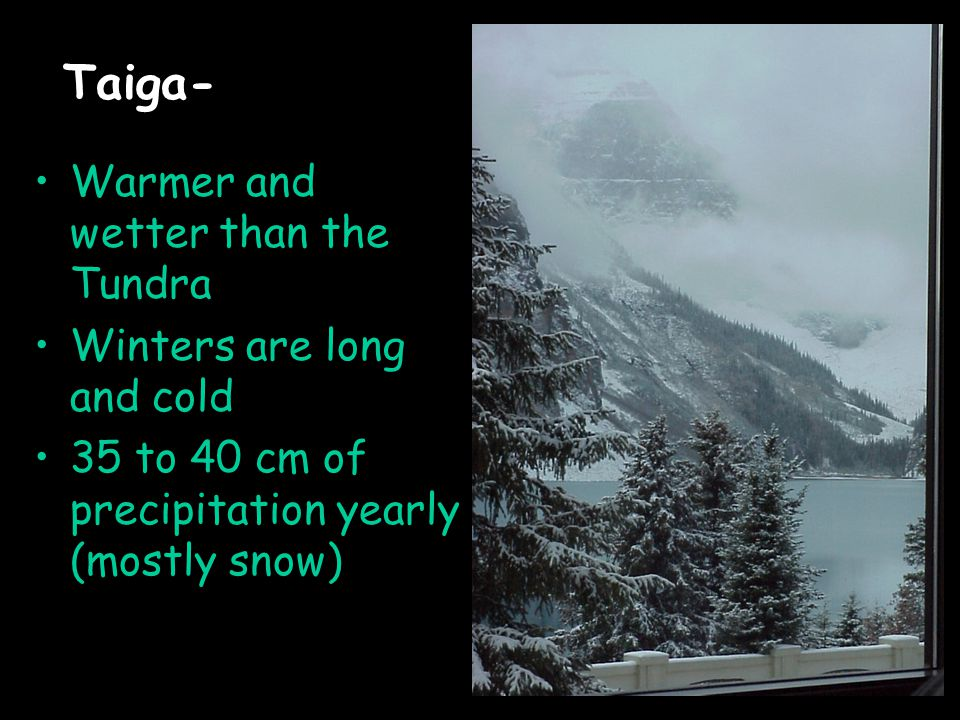 Taiga- Warmer and wetter than the Tundra Winters are long and cold 35 to 40 cm of precipitation yearly (mostly snow)