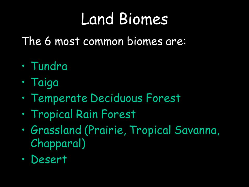 Land Biomes The 6 most common biomes are: Tundra Taiga Temperate Deciduous Forest Tropical Rain Forest Grassland (Prairie, Tropical Savanna, Chapparal) Desert