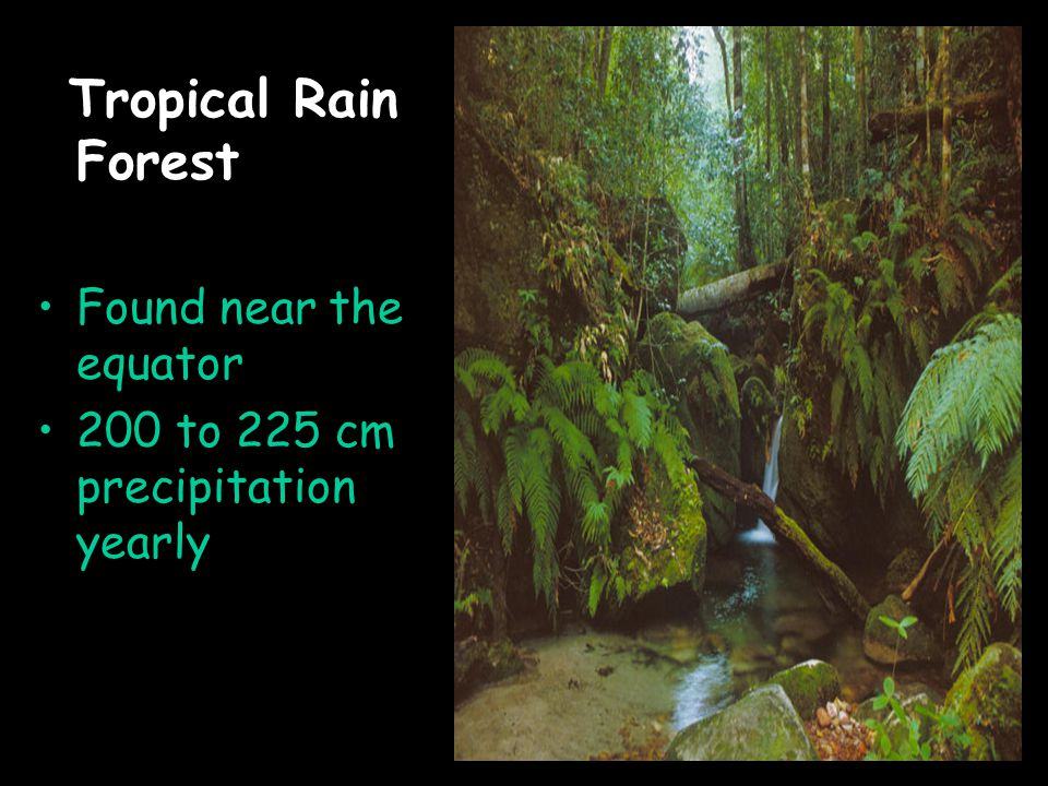 Tropical Rain Forest Found near the equator 200 to 225 cm precipitation yearly