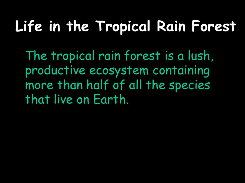 Life in the Tropical Rain Forest The tropical rain forest is a lush, productive ecosystem containing more than half of all the species that live on Earth.