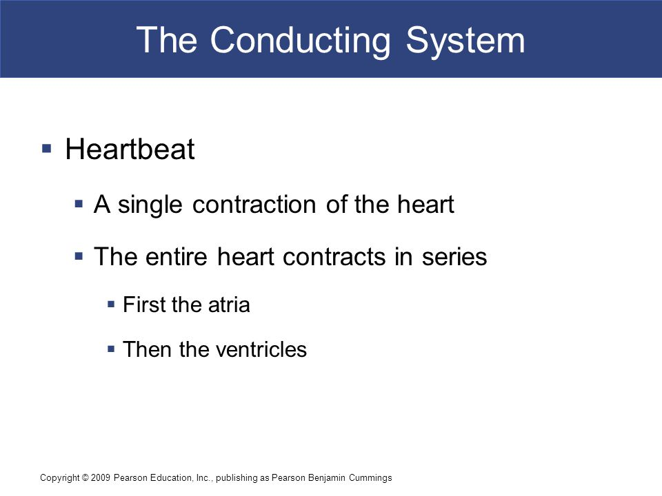 Copyright © 2009 Pearson Education, Inc., publishing as Pearson Benjamin Cummings The Conducting System  A system of specialized cardiac muscle cells  Initiates and distributes electrical impulses that stimulate contraction  Automaticity  Cardiac muscle tissue contracts automatically