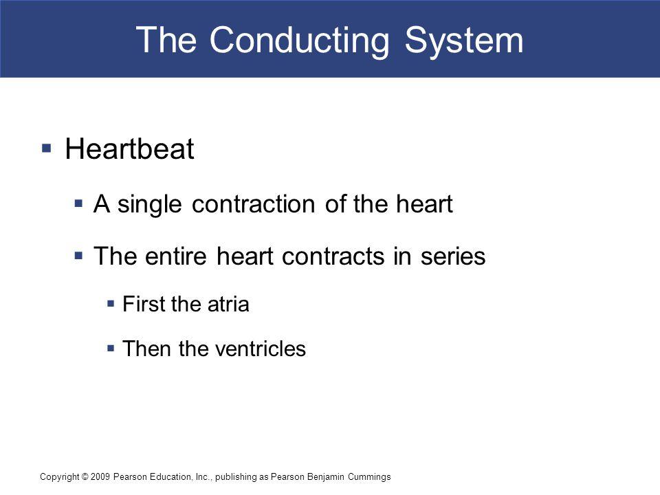 Copyright © 2009 Pearson Education, Inc., publishing as Pearson Benjamin Cummings The Cardiac Cycle  Heart Murmur  Sounds produced by regurgitation through valves