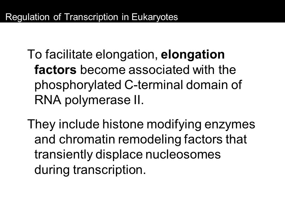 Regulation of Transcription in Eukaryotes To facilitate elongation, elongation factors become associated with the phosphorylated C-terminal domain of