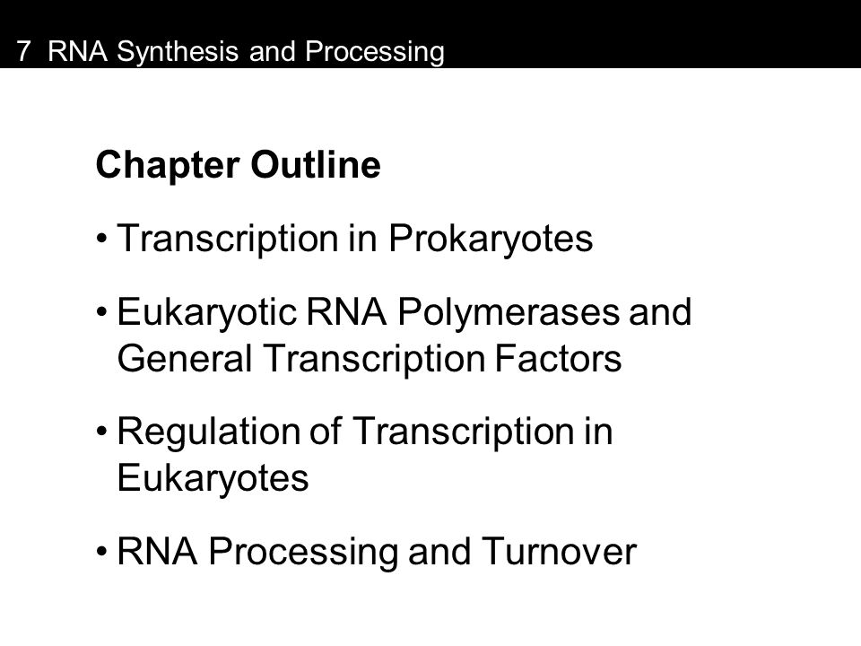 7 RNA Synthesis and Processing Chapter Outline Transcription in Prokaryotes Eukaryotic RNA Polymerases and General Transcription Factors Regulation of