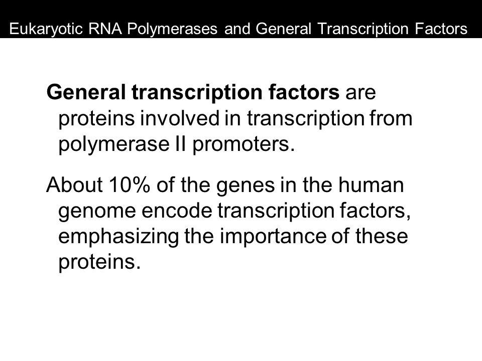 Eukaryotic RNA Polymerases and General Transcription Factors General transcription factors are proteins involved in transcription from polymerase II p