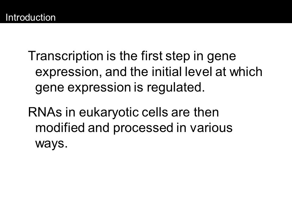 Regulation of Transcription in Eukaryotes Noncoding RNA transcribed from a regulatory gene, Xist, on the inactive X chromosome, binds to and coats this chromosome.
