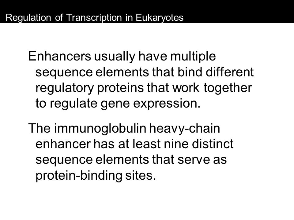 Regulation of Transcription in Eukaryotes Enhancers usually have multiple sequence elements that bind different regulatory proteins that work together