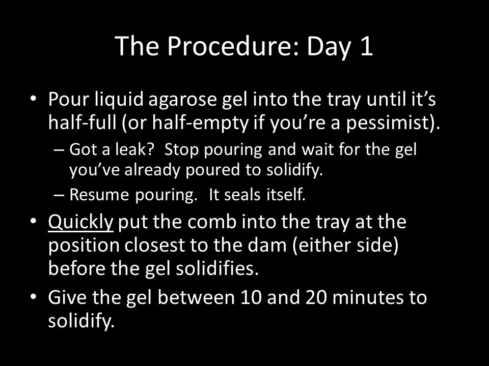 The Procedure: Day 1 Pour liquid agarose gel into the tray until it's half-full (or half-empty if you're a pessimist).