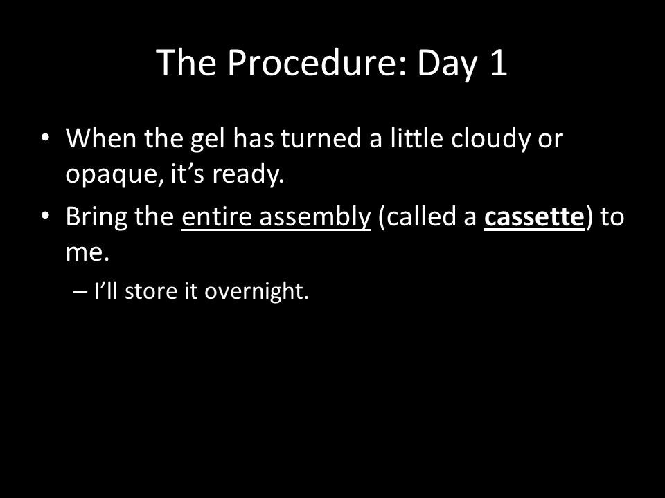 The Procedure: Day 1 When the gel has turned a little cloudy or opaque, it's ready.