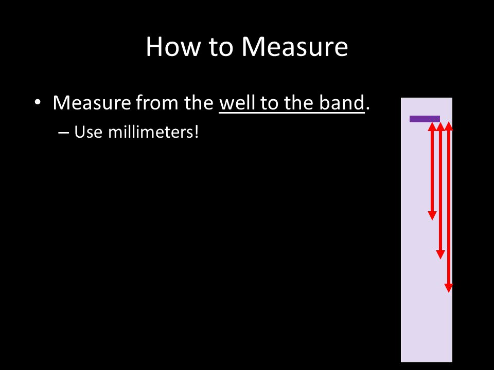 How to Measure Measure from the well to the band. – Use millimeters!