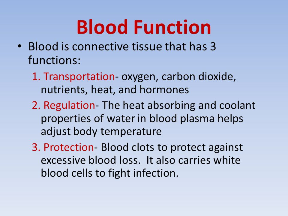Blood Function Blood is connective tissue that has 3 functions: 1.