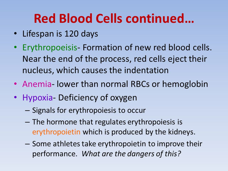 Red Blood Cells continued… Lifespan is 120 days Erythropoeisis- Formation of new red blood cells.