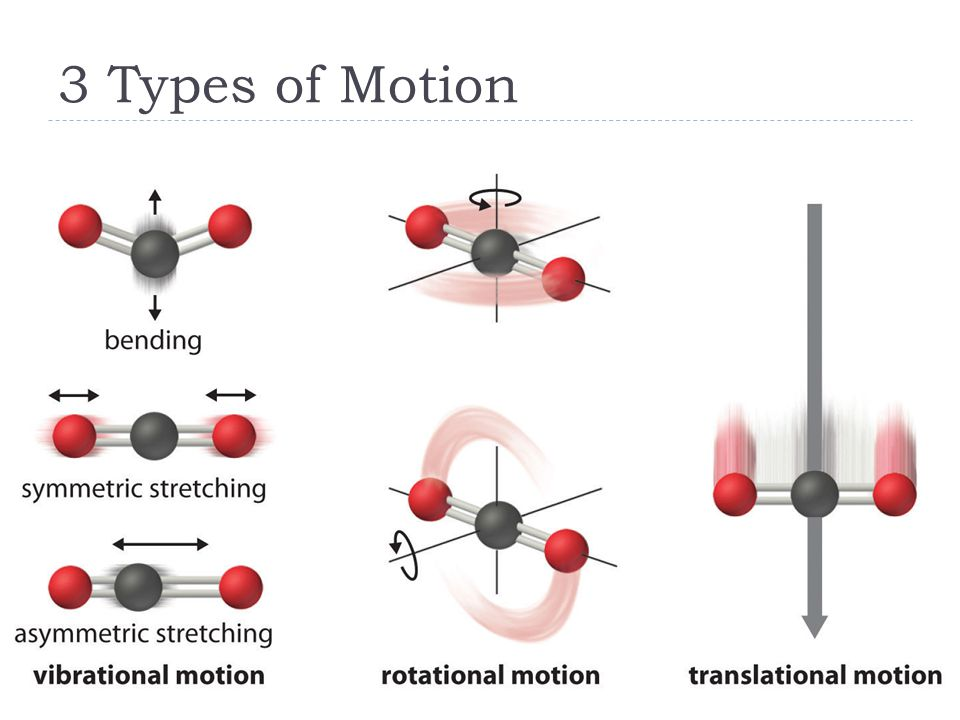 3 Types of Motion