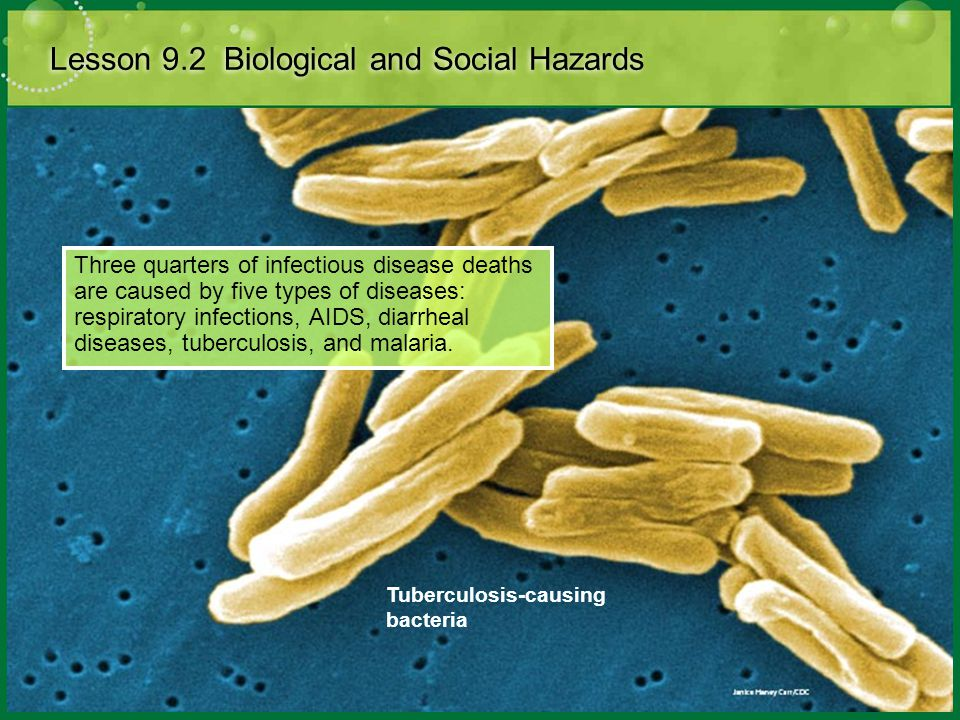 Infectious Diseases Lesson 9.2 Biological and Social Hazards Did You Know.