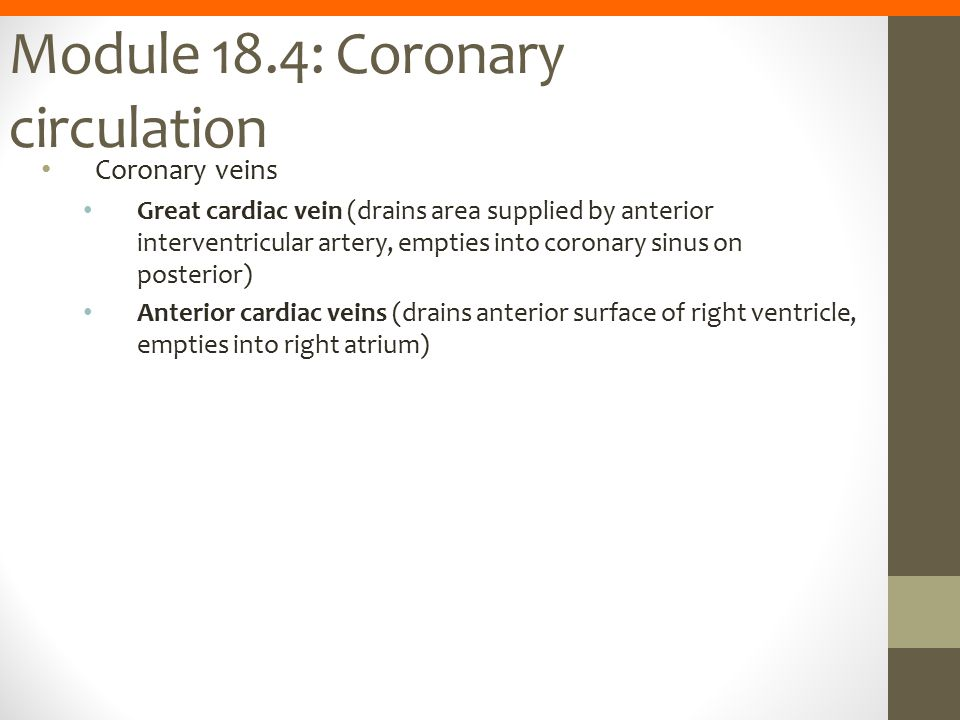 Module 18.4: Coronary circulation Coronary veins Great cardiac vein (drains area supplied by anterior interventricular artery, empties into coronary s