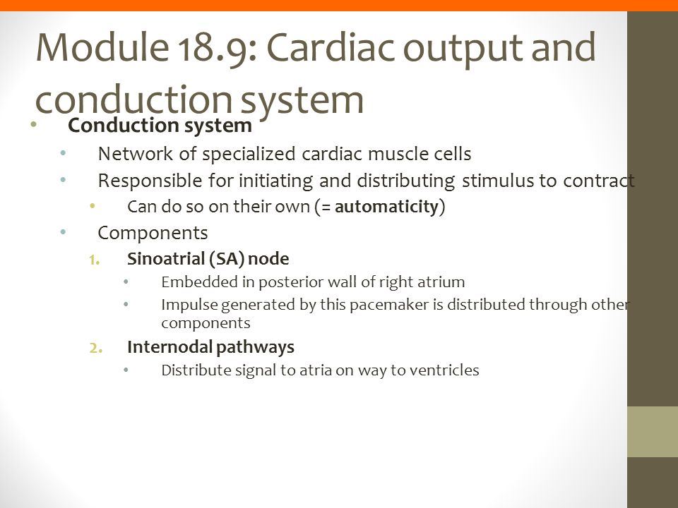 Module 18.9: Cardiac output and conduction system Conduction system Network of specialized cardiac muscle cells Responsible for initiating and distrib
