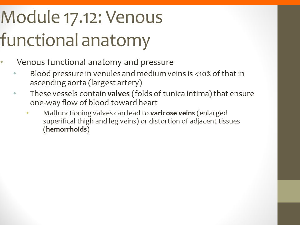 Module 17.12: Venous functional anatomy Venous functional anatomy and pressure Blood pressure in venules and medium veins is <10% of that in ascending